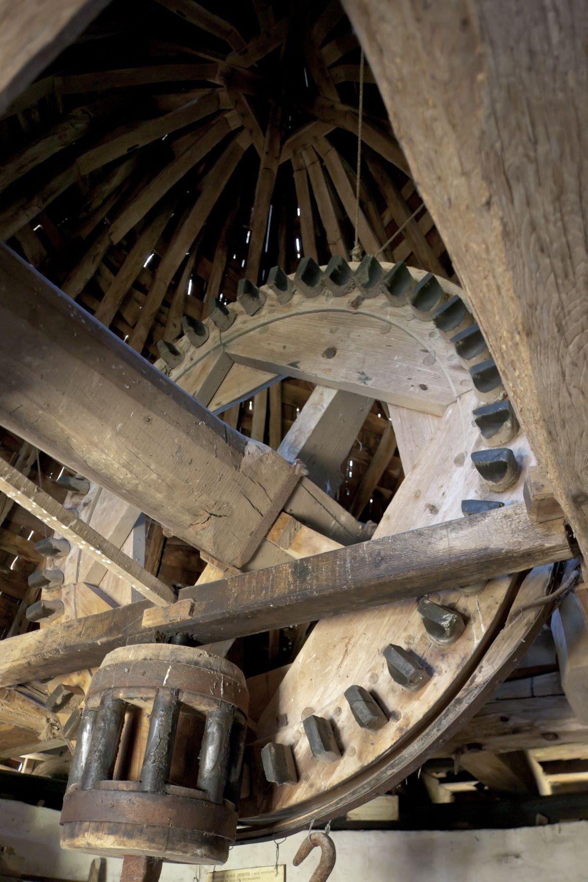 Windmill Cog