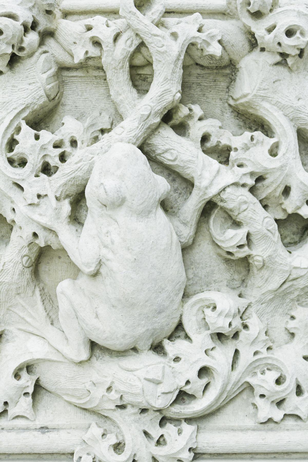 White Stone Frog