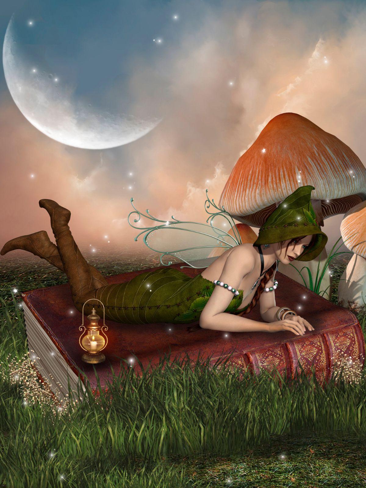 Fairy Above Book