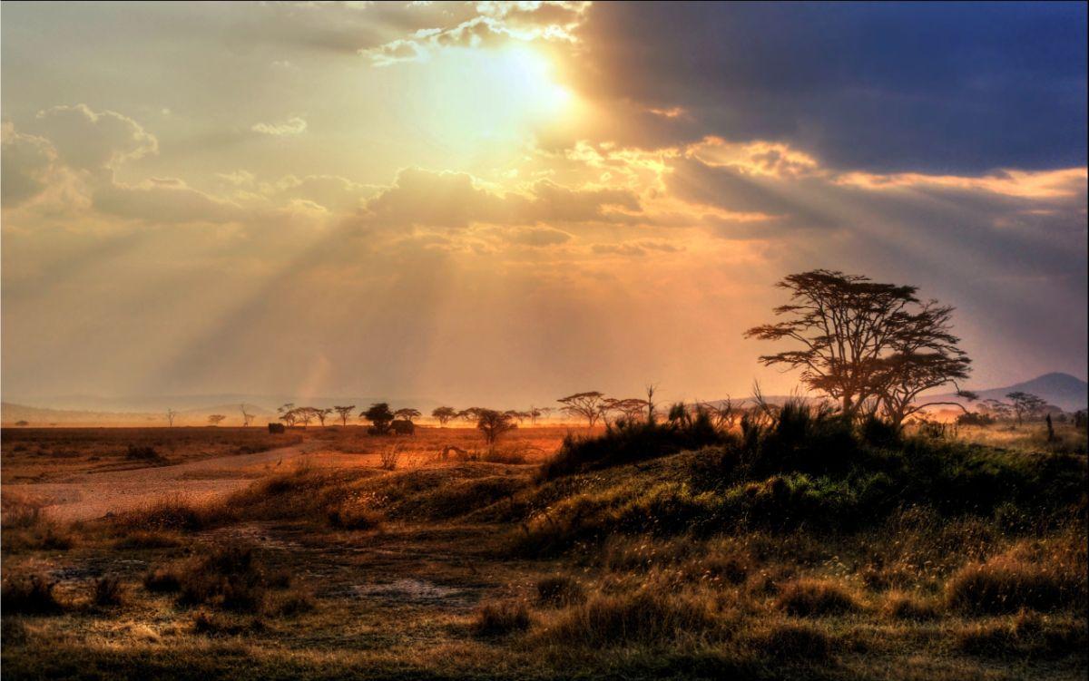 Kenya Sky