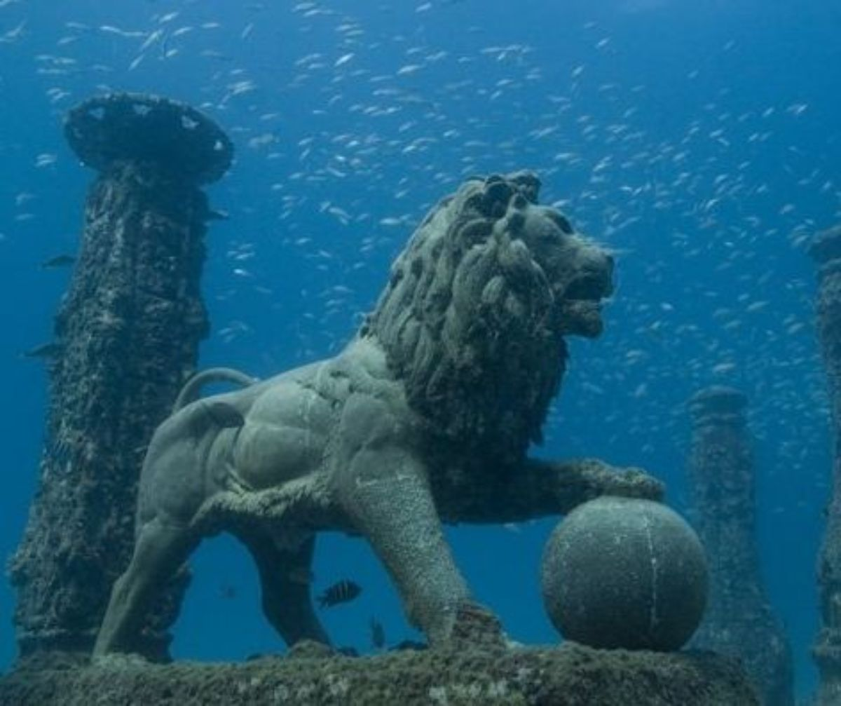 Lion With Stone